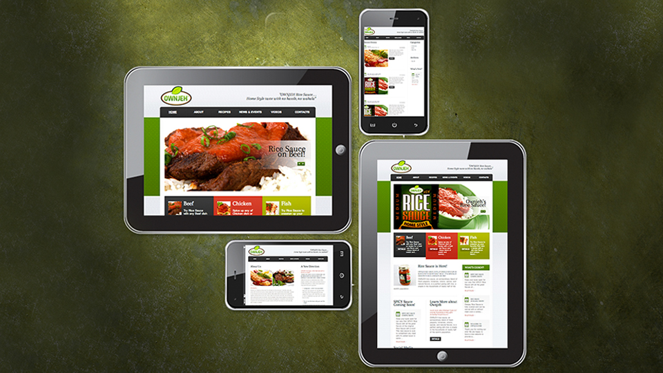 Llc In Nc >> Modupe Foods Llc Raleigh Nc Website Design Project Tigerhive