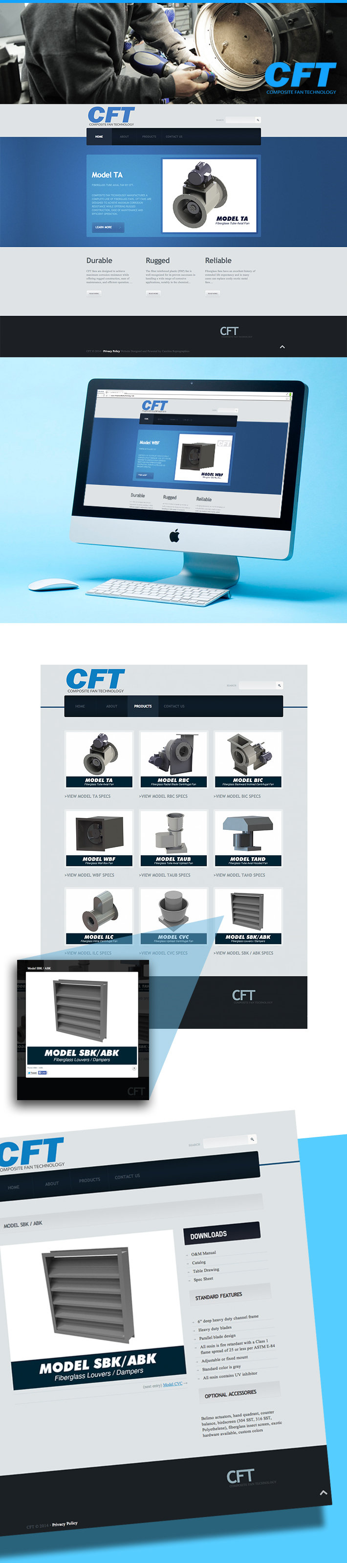 cft_website_project-graphic